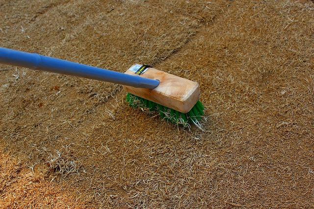芝の目土をかける