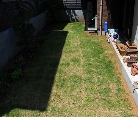 庭に芝生を張る
