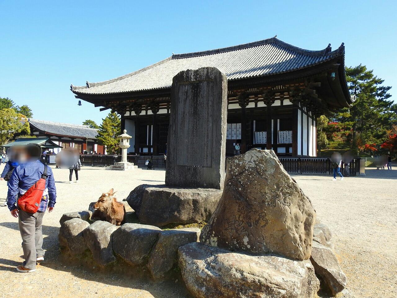 興福寺の北円堂、南円堂、東金堂